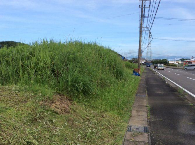 目の前の県道の幅は12-18mです